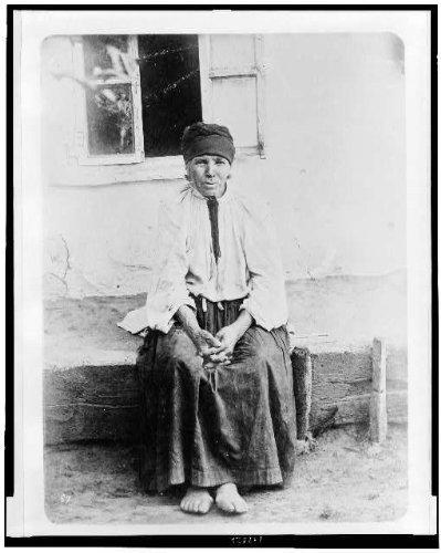 ladies dresses 1880 - 8