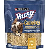 Purina Busy Chewnola Dog Treats - 10 Chewbones - 20 OZ
