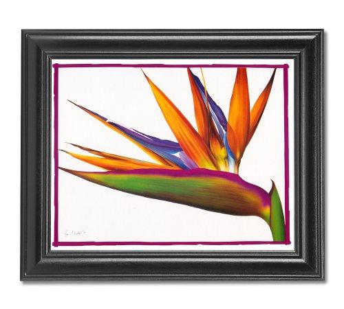 Bird Of Paradise Floral Flower Arrangement Wall Picture Framed Art Print