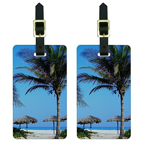 ical Beach Resort-Palm Tree Sand Luggage Tags Suitcase Id, White (Palm Tags)