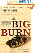 #6: The Big Burn: Teddy Roosevelt and the Fire that Saved America