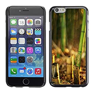 LECELL -- Funda protectora / Cubierta / Piel For Apple iPhone 6 -- Bamboo Plant --