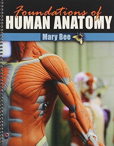 Foundations of Human Anatomy