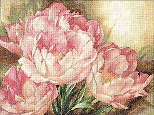 - Dimensions Gold Collection Counted Cross Stitch Kit, Tulip Trio, 14 Count Ivory Aida, 16'' x 12''