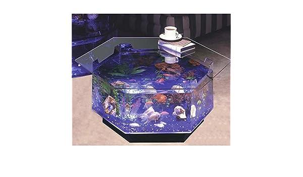 Aqua Octagon mesa de café 40 L Acuario: Amazon.es: Productos para mascotas