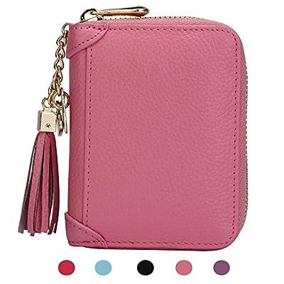 SafeCard Women's Credit Card Case Wallet 2 ID Window and Zipper Card Holder Purse