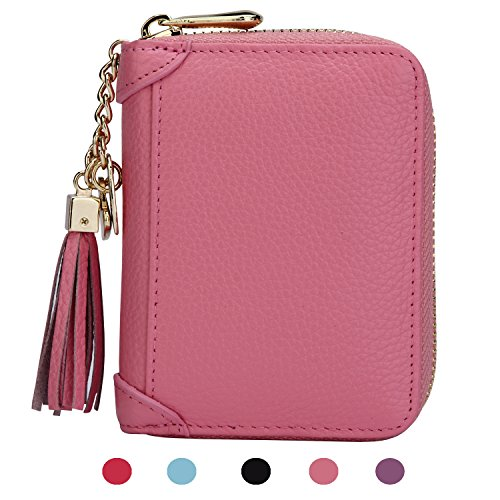 SafeCard Women's Credit Card Case Wallet 2 ID Window and Zipper Card Holder Purse