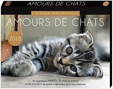 Agenda panorámica amours de gatos 2018: Collectif: Amazon.es ...