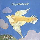 Shleep [Vinyl]