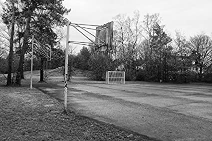 Laminated poster black white landscape tree basketball poster print 24 x 36