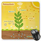 BGLKCS Educational Mouse Pad by, Cartoon Photosynthesis Oxygen Carbon Dioxide Sunlight and Water, Standard Size Rectangle Non-Slip Rubber Mousepad, Earth Yellow Green Umber