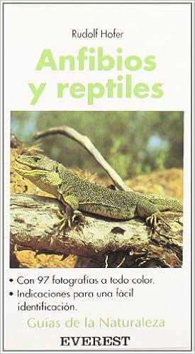 Anfibios y reptiles Guías de la naturaleza de bolsillo: Amazon.es: Hofer Rudolf, Martínez Bernaldo de Quirós Eladio: Libros
