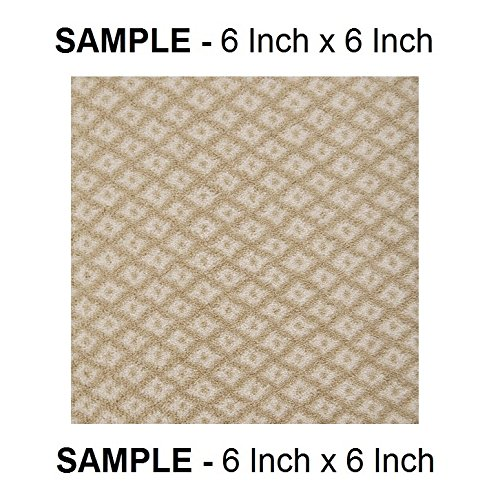 Milliken Sand - POETIC - (1) SAMPLE SWATCH - Premium 40 Oz. Tufted Pinpoint Saxony NYLON by Milliken (Warm Sand - SAMPLE SWATCH)