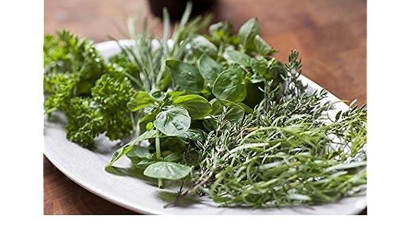 Cocina Aromática - Mezcla De Hierbas -: Amazon.es: Jardín