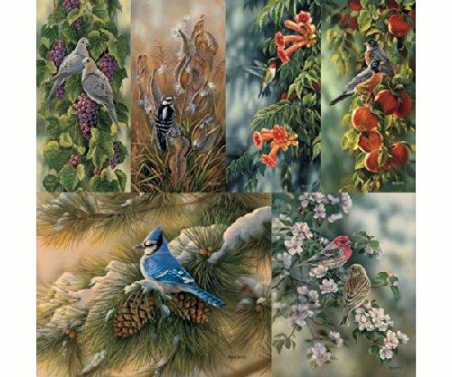 Hi-Look Inc. HL24034D Rosemary Millette Wild Birds II (Assorted) Microfiber Cloths