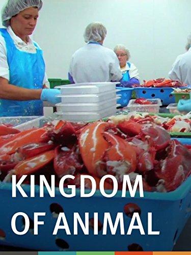 Kingdom of Animal