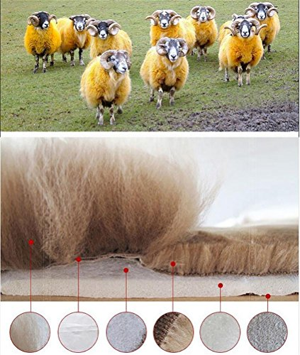 YAOHAOHAO Universal Full Set Deluxe sheep of the skin of the car seat cover wool, m yellow by YAOHAOHAO (Image #3)