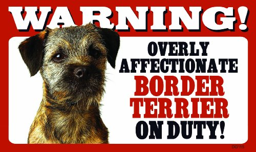 - Warning Overly Affectionate Border Terrier On Duty