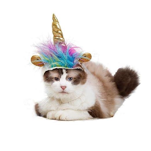 ZLALF Ropa para Mascotas Gato Traje para Perros Sombrero De ...