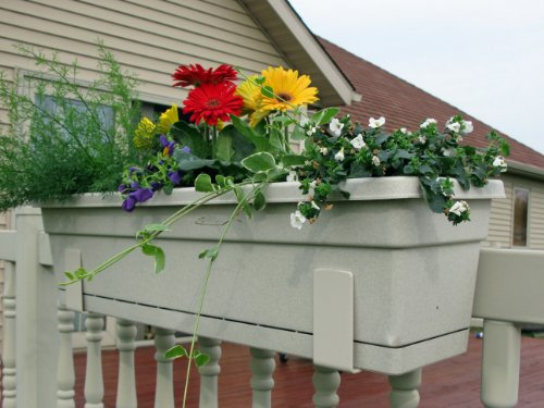 The 8 best plant hooks for vinyl fence