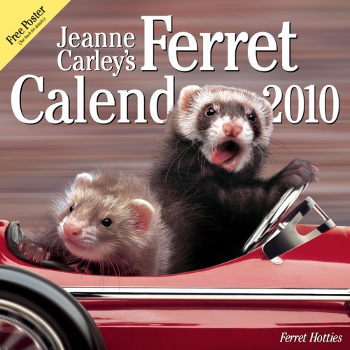 Jeanne Carley's Ferret Hotties 2010 Deluxe Wall Calendar by Ferret Company (The) (2009-06-30)