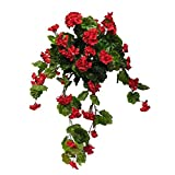 Windowbox 30'' Outdoor Rated Geranium Hanging Vine - Red
