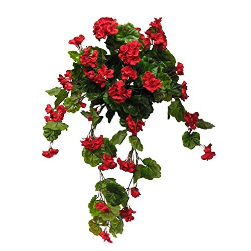 Windowbox 30'' Outdoor Rated Geranium Hanging Vine - Red