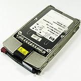 "HP 146.80 GB 3.5"" Internal Hard Drive 289044-001"