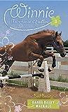 Bold Beauty (Winnie the Horse Gentler Book 3)