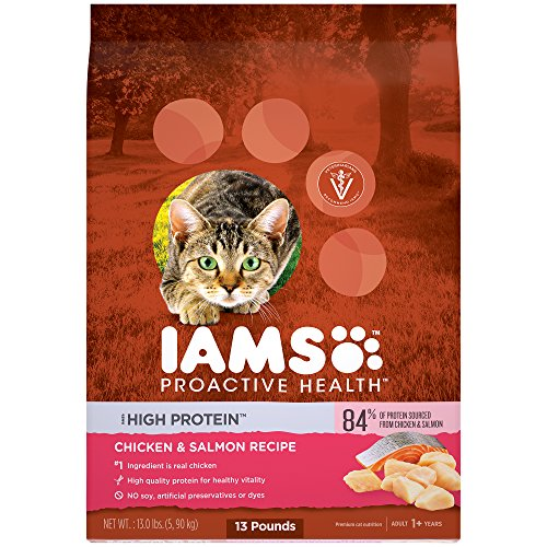 The Best Iams Protein Cat Food