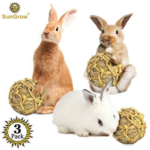 SunGrow Seagrass Ball, 3 inches, Bouncy, Chewable Teething Pet Toy for Rabbits, Cats, Hamsters, Gerbils, Birds and Other…