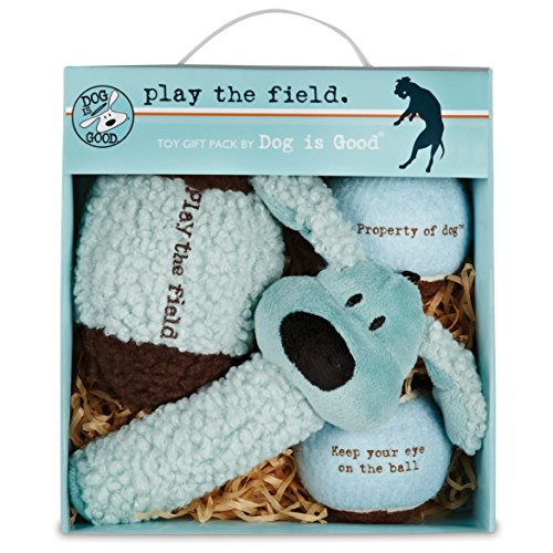Dog Is Good 4-Piece Dog Toy Gift Box – Play the Field Plush Toys Great for Games of Fetch to Exercise Your Dog (Dog Toy Gift Baskets)