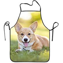 Funny Personality Apron Pembroke Welsh Corgi Puppy Resting In Grass Barbecue Cooking Apron For Boyfriends Women Father's Day Gifts