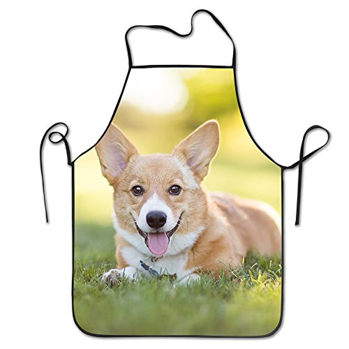 Funny Personality Apron Pembroke Welsh Corgi Puppy Resting In Grass Barbecue Cooking Apron For Boyfriends Women Father's Day (Puppy Aprons)