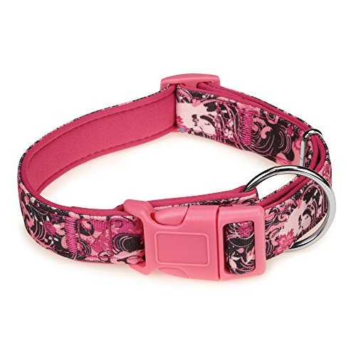 "Casual Canine Neoprene Dog Collar, Fits Necks 10"" to 16"", Pink Floral"