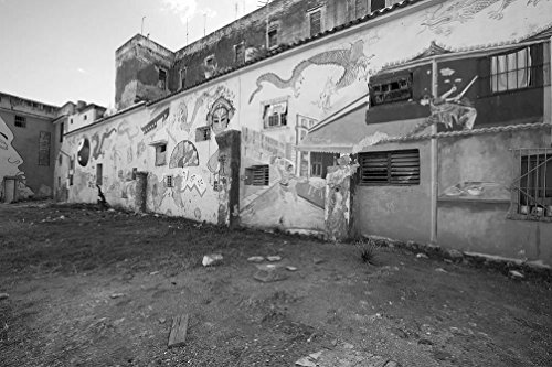 - 24 x 36 B&W Giclee Print Murals Painted on a Building on Dragones Street, in The Chinatown Section Havana, Cuba 2010 Highsmith 28a