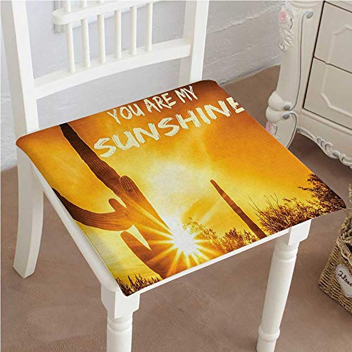 (Premium Comfort Seat Cushion Sunset Cactus Plant Love Quotes Theme You are My Sunshine Bedroom Accessories Orange Cushion for Office Chair Car Seat Cushion 22