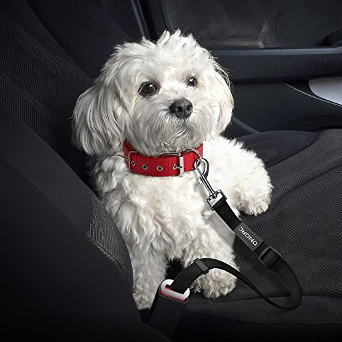 OMorc Dog Seat Belt -2 Pack, Nlyon Car Leash For Dog/Cat