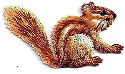 Amazon chipmunk forest animal cute critters iron on
