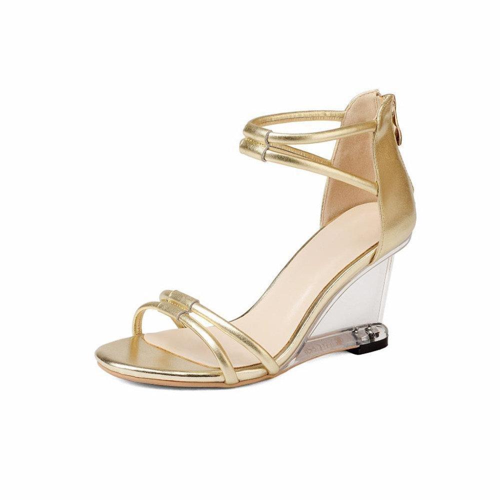ZHRUI Zapatos de Tacón H6010 Mujeres Zapatos Individuales Sandalias Calzado Romano Casual Ceremonia de la Boda Pendiente Cremallera Altura del Tacón 8cm Plata, Golden EU36/UK4/CN36|Silver