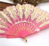 Pink Fashion Vintage Spanish Plastic Embroidered Hand Folding Women Girl Dancing Fan Home Decor Tools