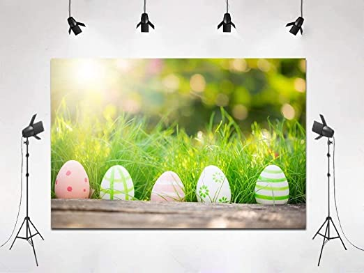 New Easter Day Backdrop Spring Photography Colorful Eggs Green Grass Flower Children Photoshoot Prop for Studio 8x6ft XT-5227-XT-5227