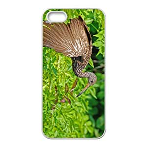 Stork Bird Hight Quality Plastic Case for Iphone 5s