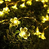 LED Flower String Light, 50 Blossom Led Lights String Battery Powered Remote Controlled, Wedding Surprise Proposal Atmosphere Creator Warm Color, Outdoor Damp Location Christmas Open-air Party Decor
