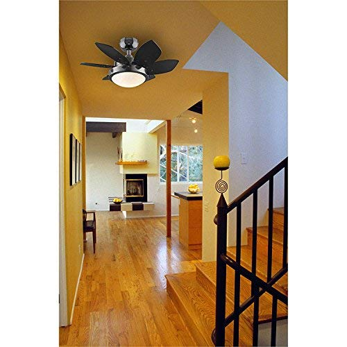 Westinghouse 7224300 Quince 24-Inch Gun Metal Indoor Ceiling Fan, Light Kit with Opal Frosted Glass by Westinghouse Lighting (Image #6)