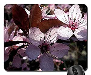 Pink Spring Flower Mouse Pad, Mousepad (Flowers Mouse Pad, Watercolor style) by icecream design