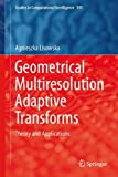 Geometrical Multiresolution Adaptive Transforms : Theory and Applications, Lisowska, Agnieszka, 3319050109