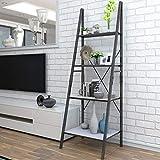 Lifewit Ladder Shelf Bookshelf 4 Tiers Bookcase,Plant Stand Storage Shelf for Garden,Storage Rack for Bathroom/Living Room,Metal Frame.