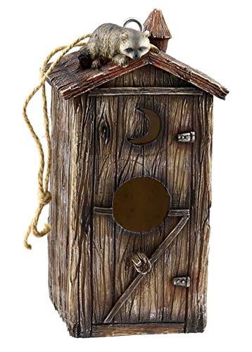 - Birdhouse Raccoon Outhouse, Collectible Garden Decor, 9.5-inch