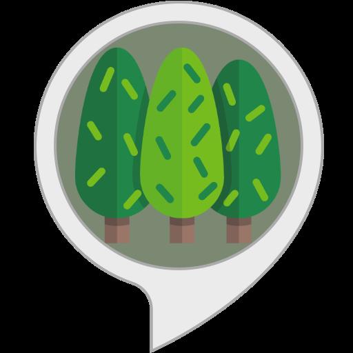 Rumore della Foresta